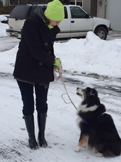 snow-day-training-walk-with-melissa-and-lilly
